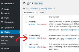 instal wp plugin